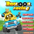 Play Raccoon Karting Race